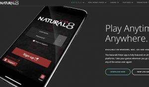 Natural8 Unveils Free Bubble Insurance for Early Birds