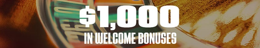 $1000 usd in welcome bonuses